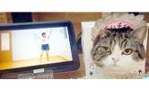 資生堂 ハラハチ体操やってみた 動画コンテスト
