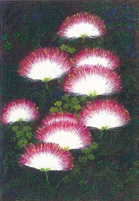 「ねむの花」