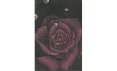 第25回 花の絵コンクール
