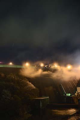霧と桜と草木ダム