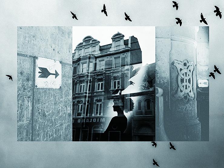 Girl & Pigeon