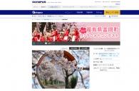 【イベント】福島県富岡町サクラフォトコンテスト入賞作品展、東京で開催