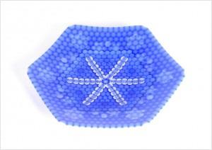皿「雪の花 氷の花」