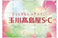 【イベント】多摩美生が手掛けた看板が玉川高島屋S・Cに登場 産学連携で二子玉川の春を彩る