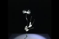【イベント】今週末まで!第22回文化庁メディア芸術祭受賞作品展が東京・お台場で開催中