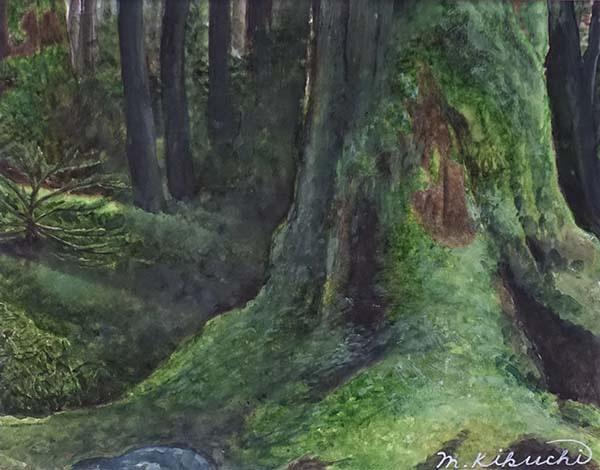 樹林のハーモニー