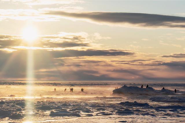 Drift ice covering the Sea of Okhotsk