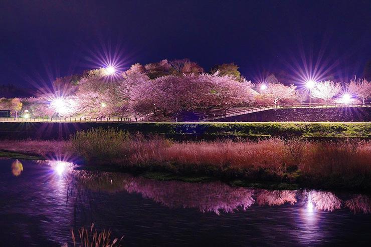 絶景詩情公園